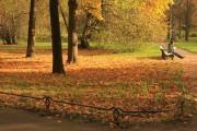 Осенняя фотосессия - кусочек тепла для благополучной зимовки
